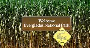 National Parks East Coast